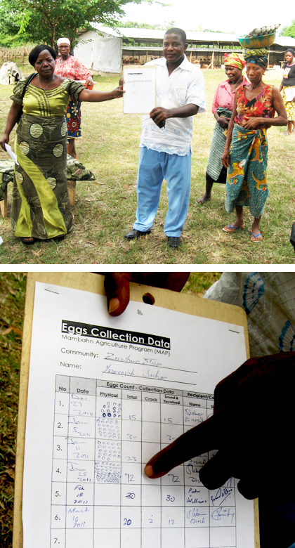 Mambhan Agricultural Program providing economic development and independence for Women (Liberia)